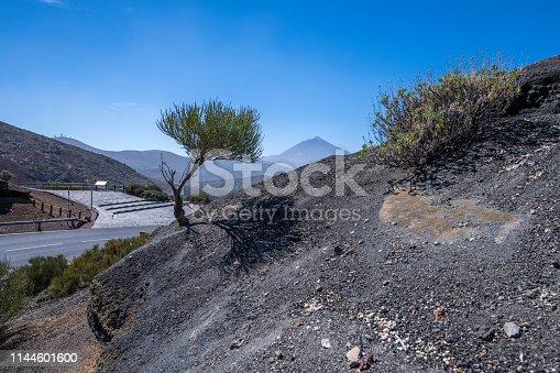 Asphalt road and Rock La Tarta - lava rock formation in El Teide National Park on the Tenerife Island, Spain