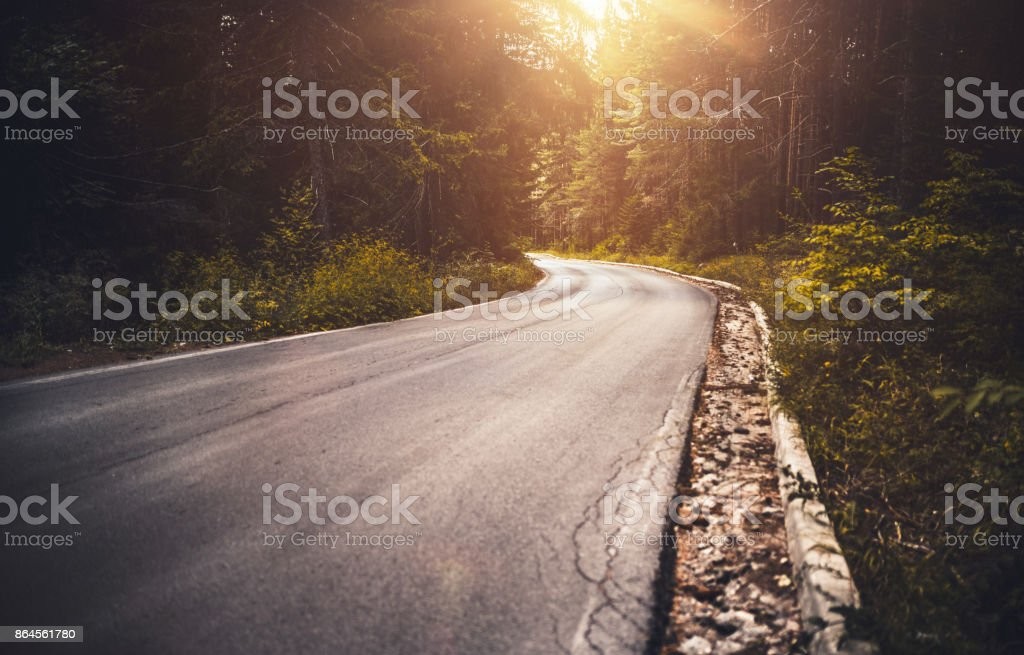 Asphalt road in a misty forest at sunset stock photo