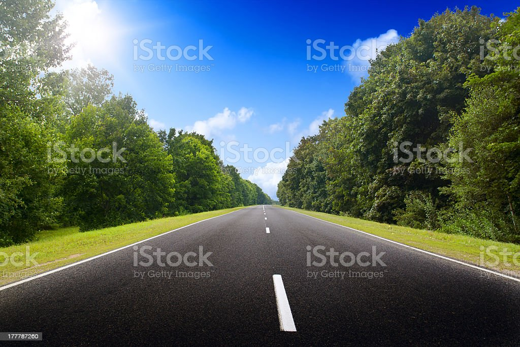 Asphalt road in green forest. stock photo