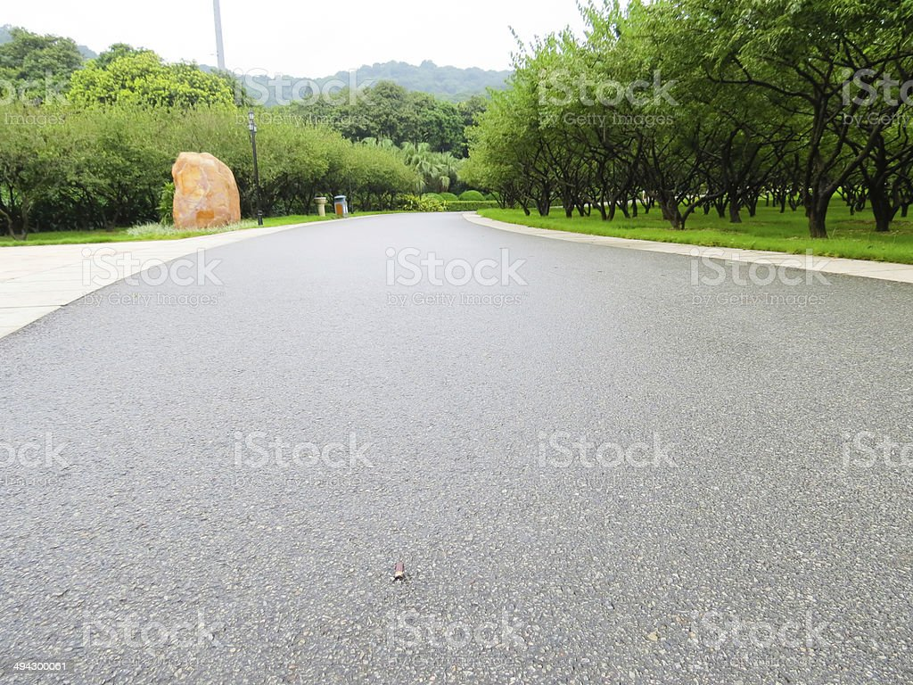 Asphalt road in the park stock photo