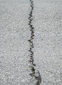 フリー写真画像: ひび割れ、アスファルト舗装