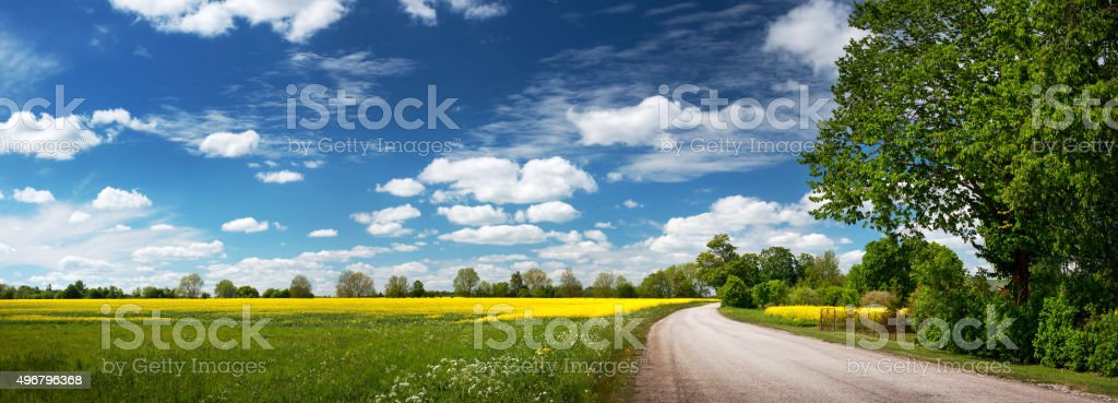 Asphalt road near a field stock photo