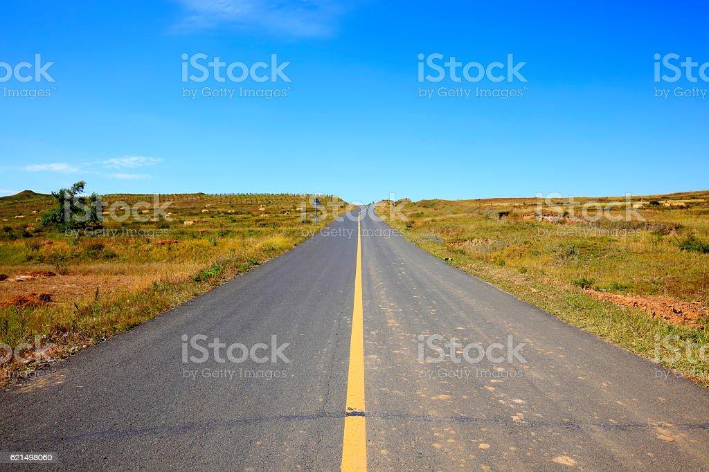 asphalt road on grassland foto stock royalty-free