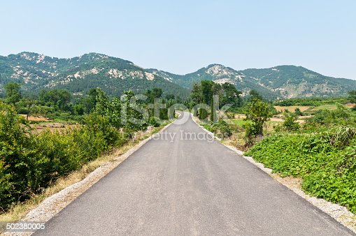 825525754 istock photo Asphalt road stretching away into the distance 502380005