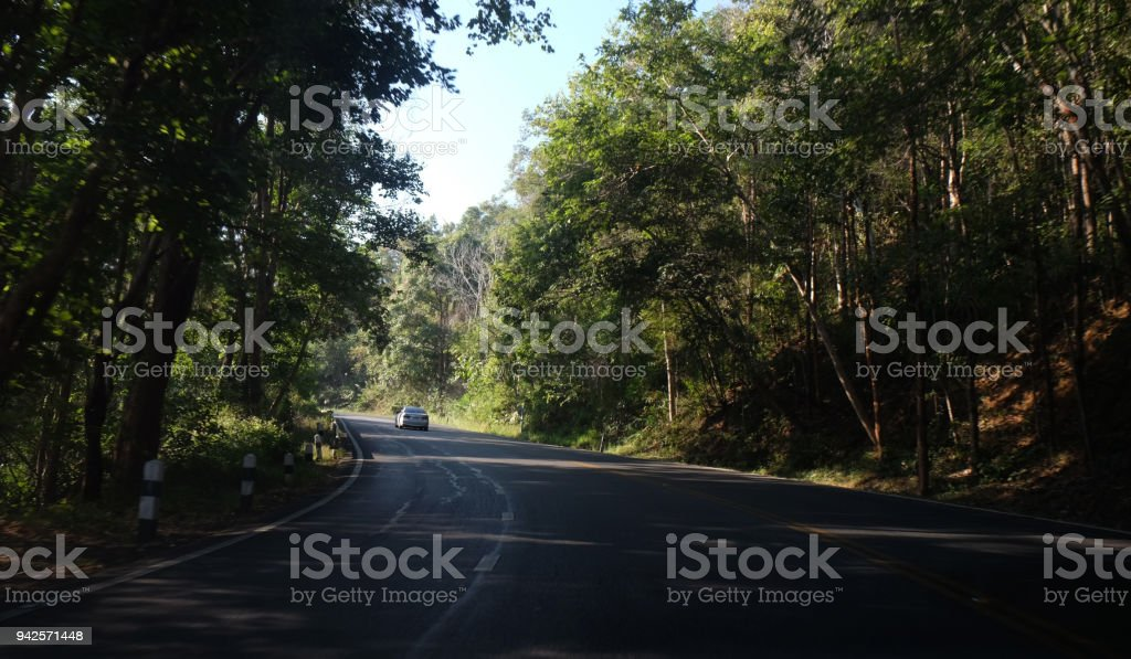 Asphalt road through the forest, gree natural background stock photo
