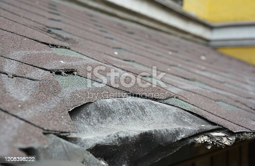 Roof of a house and trees