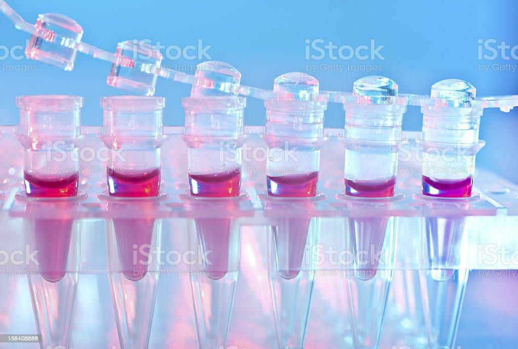 DNA assay for genetic screening stock photo