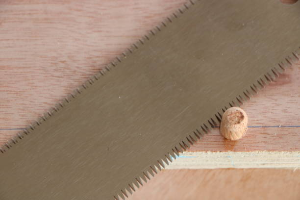 Assembling furniture, cutting off the excess dowel joint by Japanese pull saw stock photo