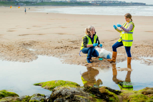 Assessing Environmental Damage Two females working on the beach by a pool of water collecting and analysing samples. They are wearing protective gloves and reflective clothing environmental cleanup stock pictures, royalty-free photos & images
