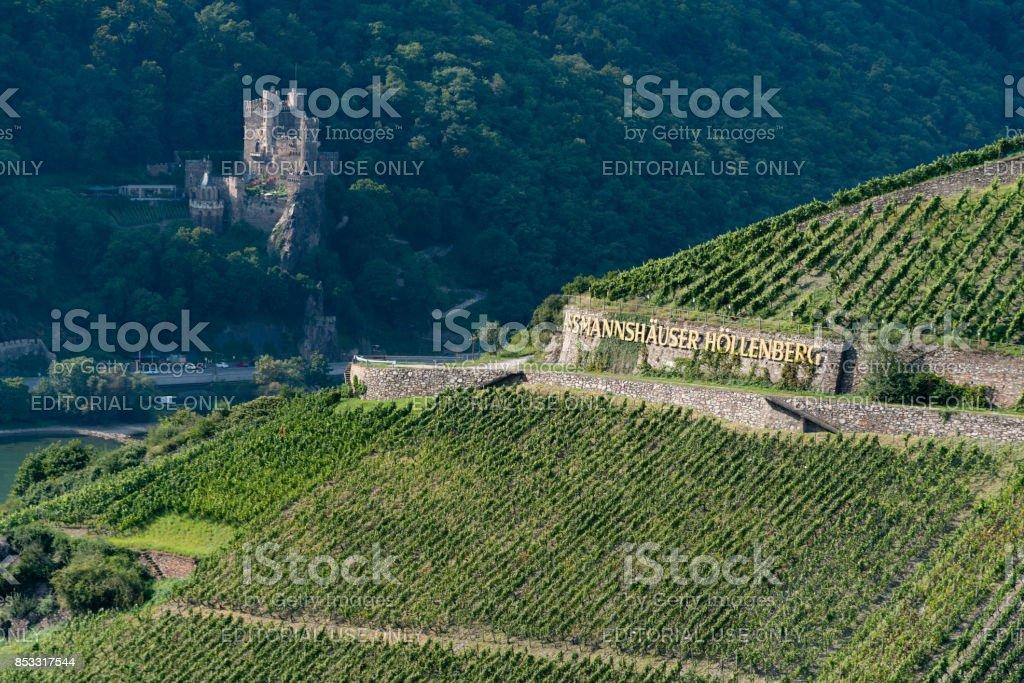 Assmannshäuser Höllenberg, Rheingau Winegrowing Region stock photo