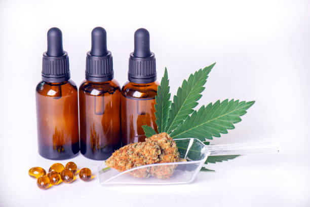 Assorted cannabis products including cannabis tincture or CBD oil, dried nugs and capsules stock photo