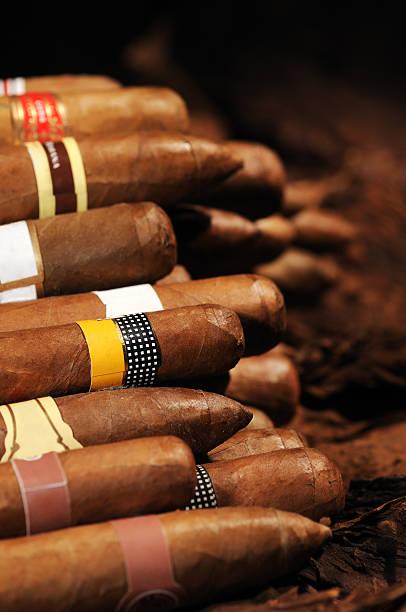 Verschiedene Kubanische Zigarren – Foto