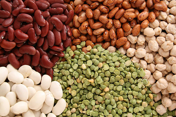 assorted grains - bean stock photos and pictures