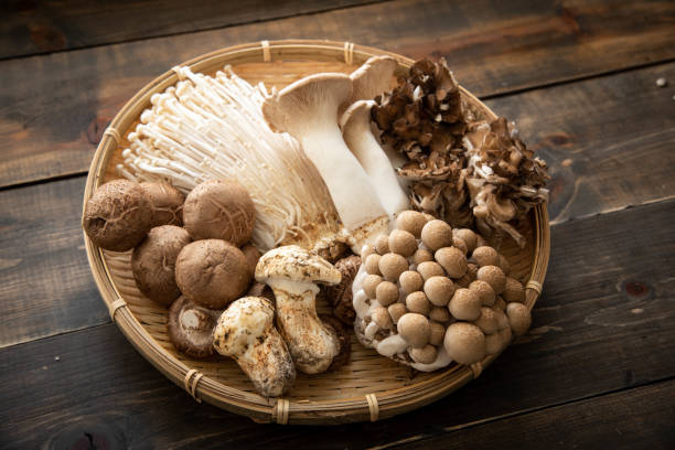 assorted japanese mushroom - fungus stock pictures, royalty-free photos & images
