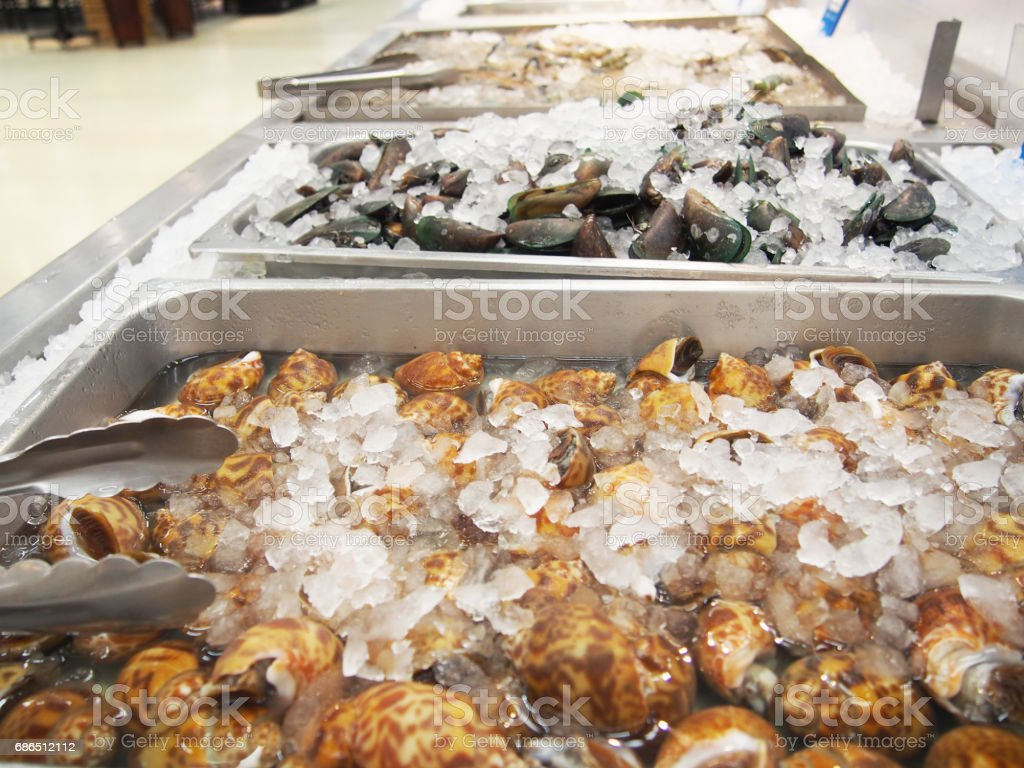 assorted mollusks on ice in seafood market royalty free stockfoto