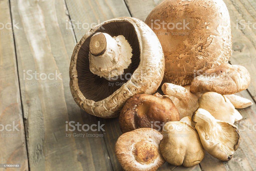 Surtido de hongos - Foto de stock de Alimento libre de derechos