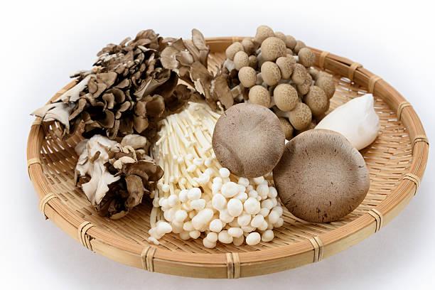 Assorted of mushrooms stock photo