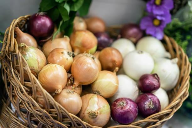 oignons assortis de différentes variétés. panier avec légumes frais biologiques, vitamines vivantes, selectiv focus. marché fermier - couleur des végétaux photos et images de collection