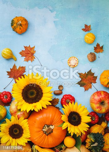 istock Assorted pumpkins, gourds, apples and sunflower  for fall arrangement. Still life composition, can be used for Thanksgiving, Halloween or  autumn  harvest 1181710104