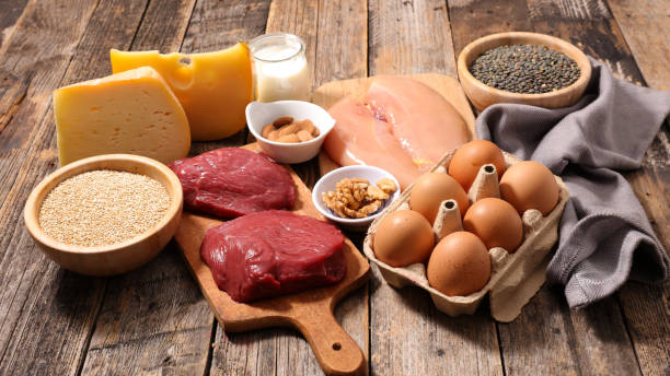 assorted raw food, protein stock photo