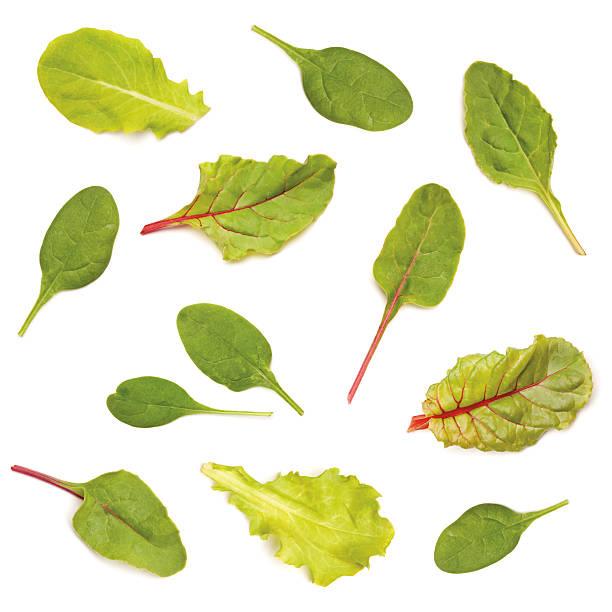 gemischten grünen salat blätter - mangoldgemüse stock-fotos und bilder