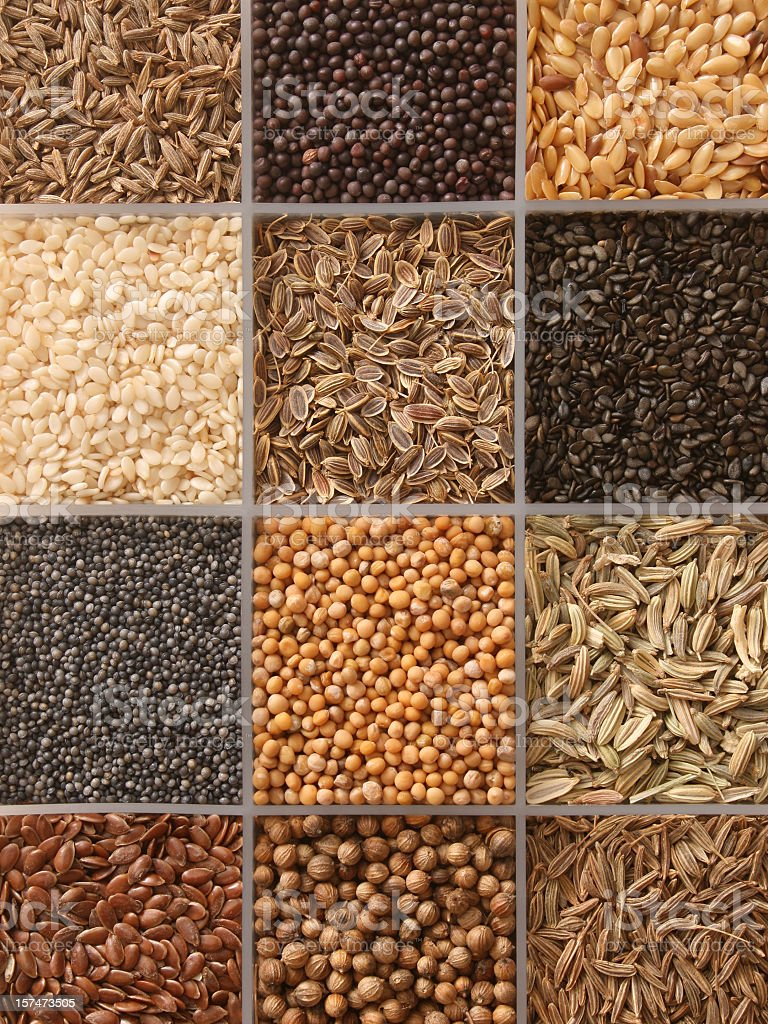 Assorted seeds stock photo