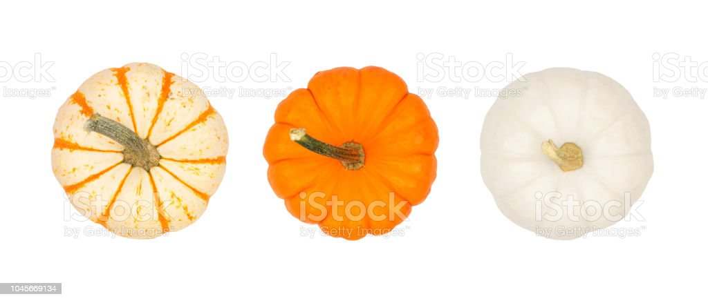 Assortment of autumn pumpkins, top view isolated on white stock photo
