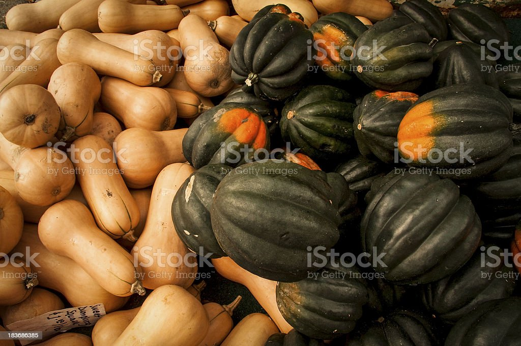 Assortment of butternut and acorn squashes royalty-free stock photo