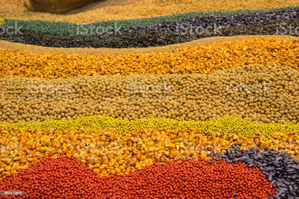 Asortyment kolorowych ziaren i zbóż - Zbiór zdjęć royalty-free (Fotografika)