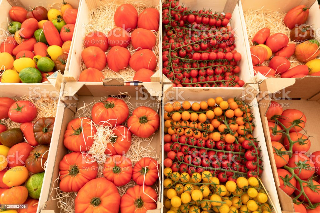 Assortment of red and yellow tomatoes on a market stall Many varieties of tomatoes in crates. Agriculture Stock Photo