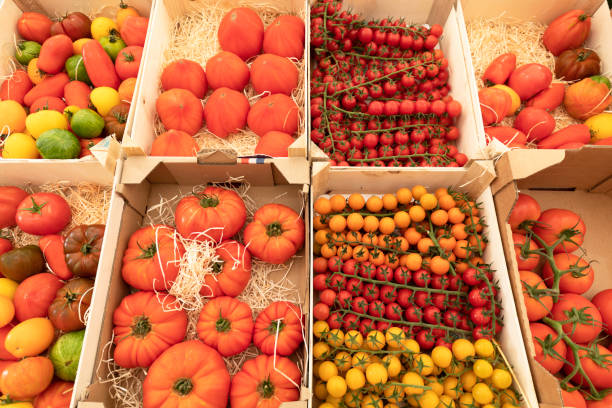 Assortment of red and yellow tomatoes on a market stall stock photo