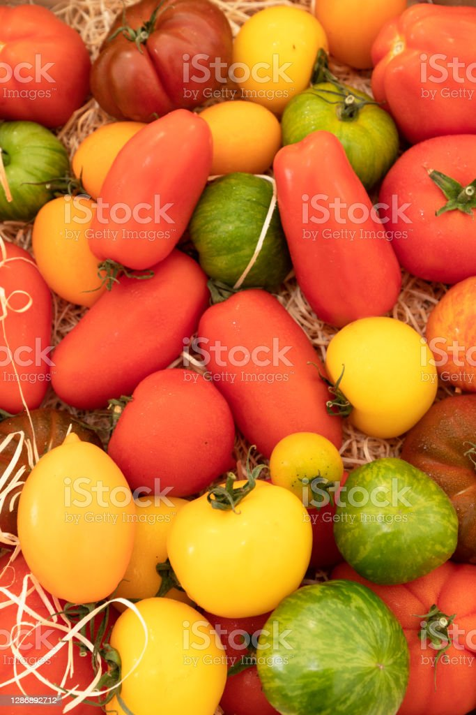 Assortment of red, green and yellow tomatoes Close up of many varieties of tomatoes Agriculture Stock Photo