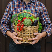 Assortment of ripe vegetables from orchard in farmer hands. Harvest concept, farm, market, organic bio food delivery, zero waste, eco-friendly concept.
