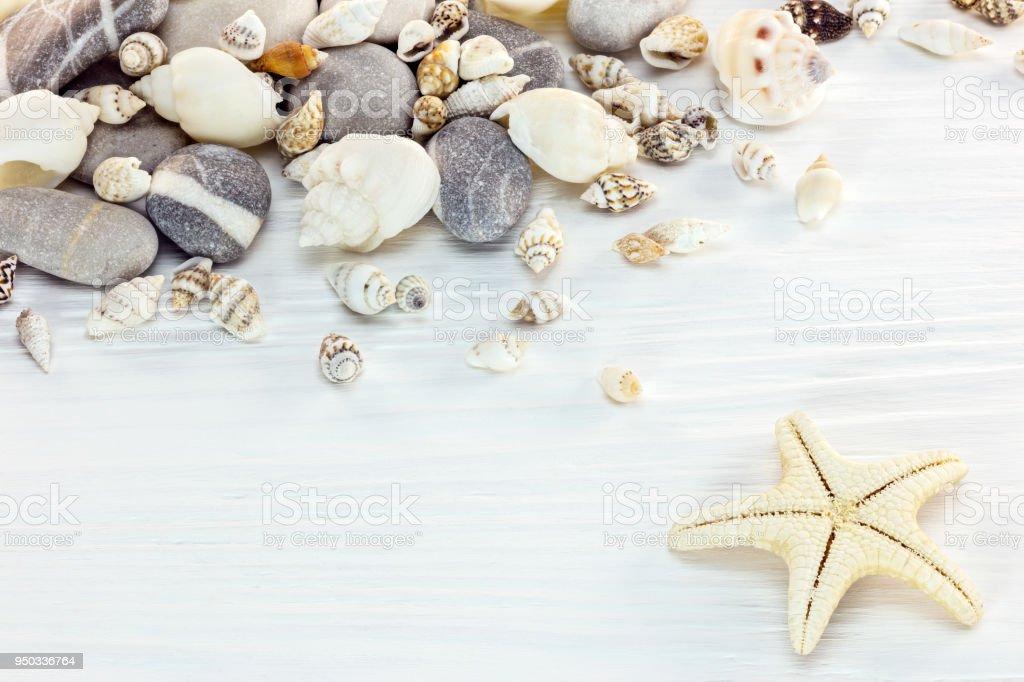 assortment of seashells, marine stones and starfish on wooden background stock photo