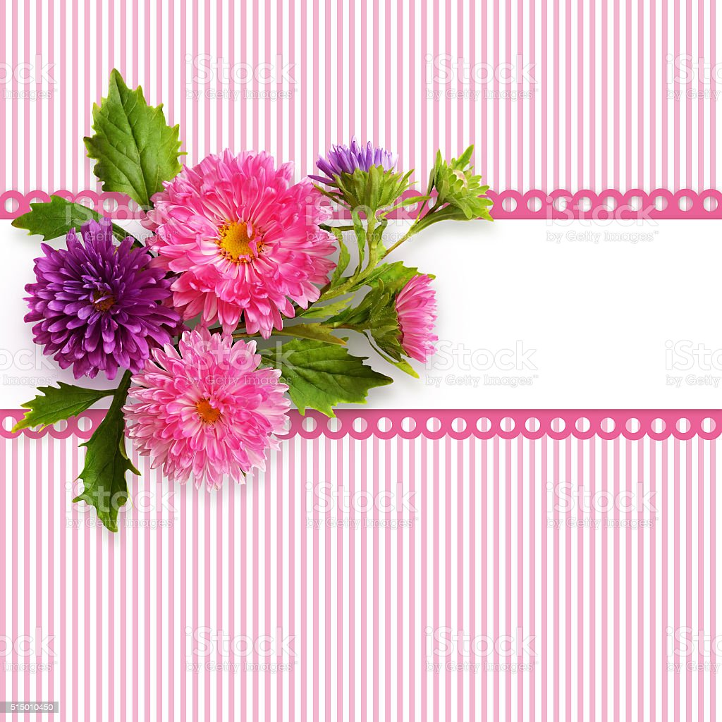 Aster flowers composition and a frame stock photo