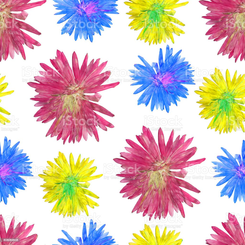 Aster. Seamless pattern texture of flowers. Floral background, photo collage stock photo