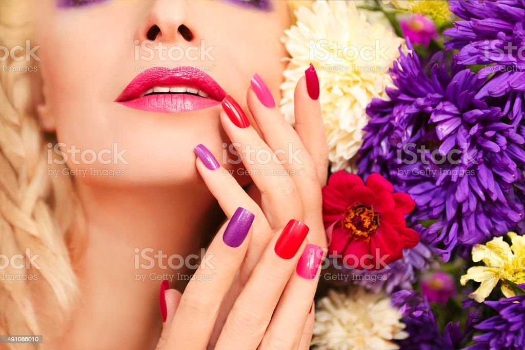 Asters. stock photo
