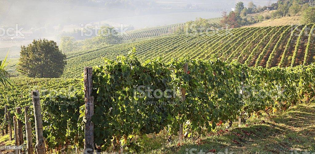 Astigiano, Piedmont, Italy stock photo
