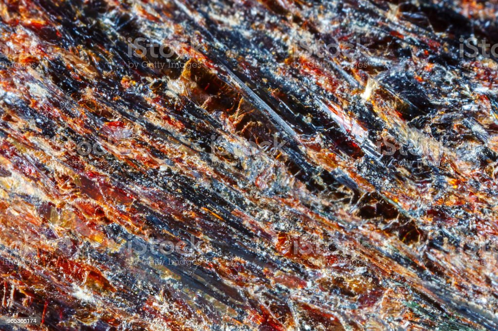Astrofillit mineral Khibiny Mountains. The texture of the mineral. Macro shooting of natural gemstone. The raw mineral. Abstract background royalty-free stock photo
