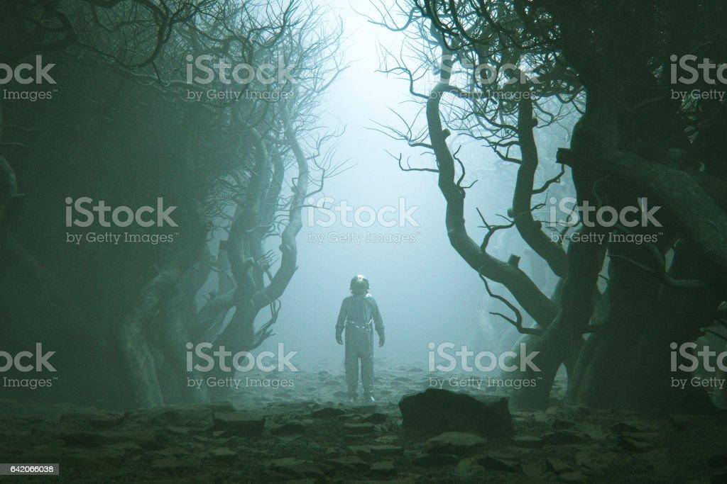 Astronauta perdido na floresta nevoenta. - foto de acervo