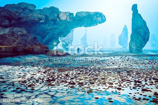 istock Astronaut on strange, rocky alien planet 534313158