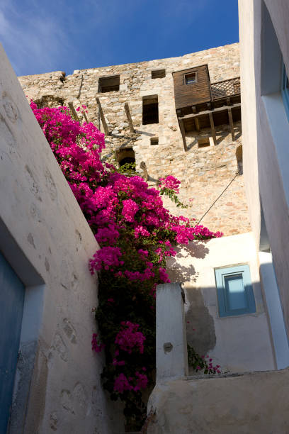 Astypalea island, Chora old village view, a detail of traditional house, Bougainvillea plant and castle wall- Greece, Dodecanese Islands stock photo