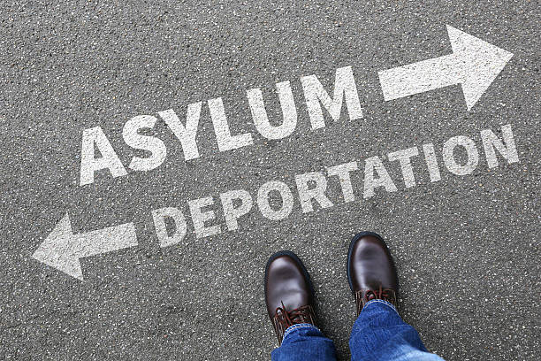 Asylum deportation removal refugees sanctuary immigrants illegal Asylum deportation removal refugees refugee sanctuary immigrants illegal immigration concept deportation stock pictures, royalty-free photos & images