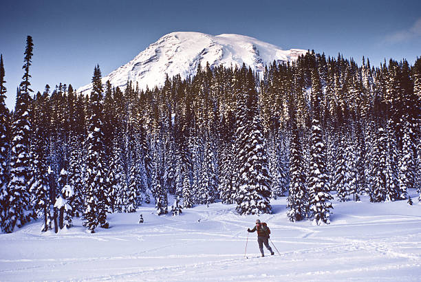 Cross Country Skiing at Mount Rainier stock photo