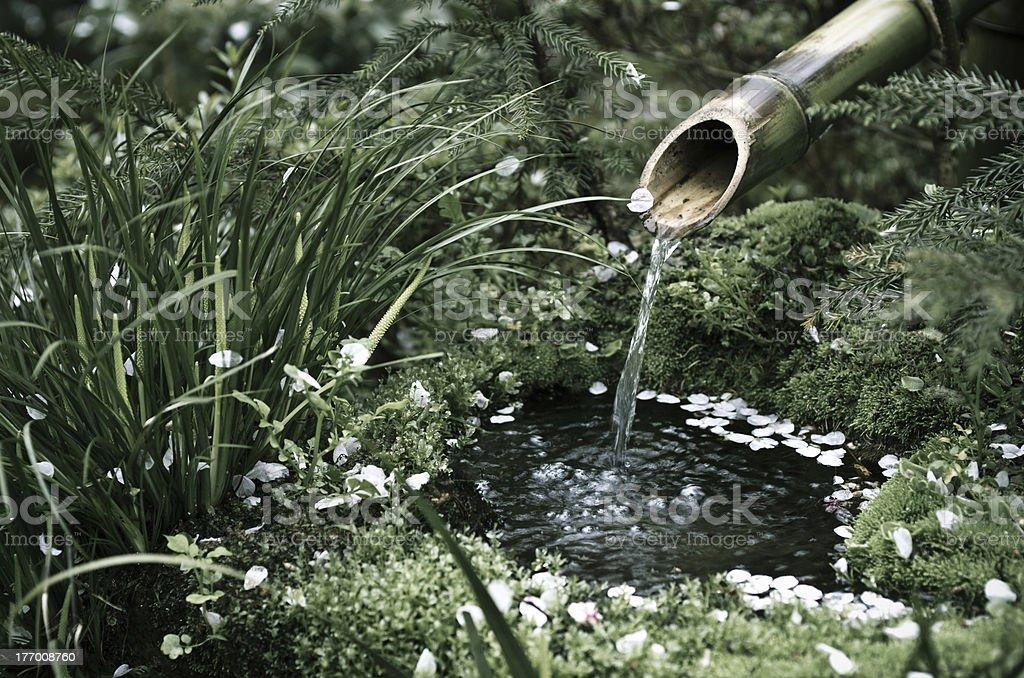At a Zen Garden royalty-free stock photo