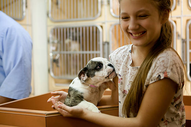 At animal adoption centre At animal adoption centre cute girl holding a puppy ready to adopt sheltering stock pictures, royalty-free photos & images