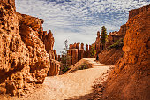 At Bryce Canyon National Park, Peek-a-boo trail
