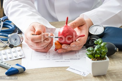 istock At doctors appointment physician shows to patient shape of urine bladder with focus on hand with organ. Scene explaining patient causes and localization of diseases of bladder and the urinary system 1129611517