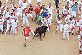 Pamplona, Spain - July 8, 2013: People having fun with young bulls at San Fermin festival. Navarra