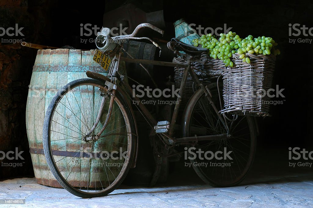At Harvest royalty-free stock photo